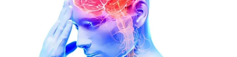 Половые гормоны —  нейропротекторы. Роль при рассеянном склерозе.