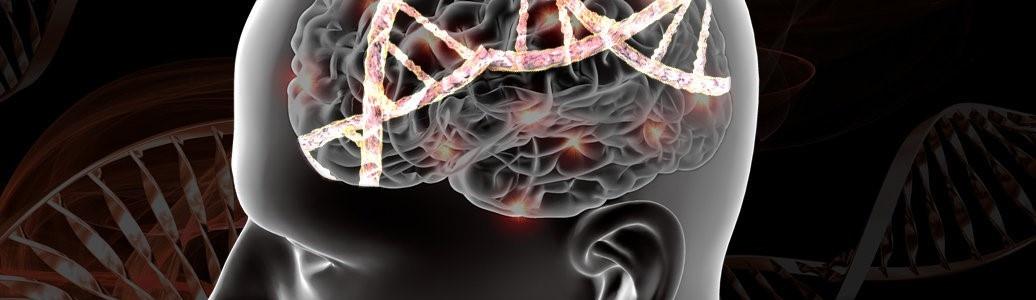 Открыта генетическая основа тревожности