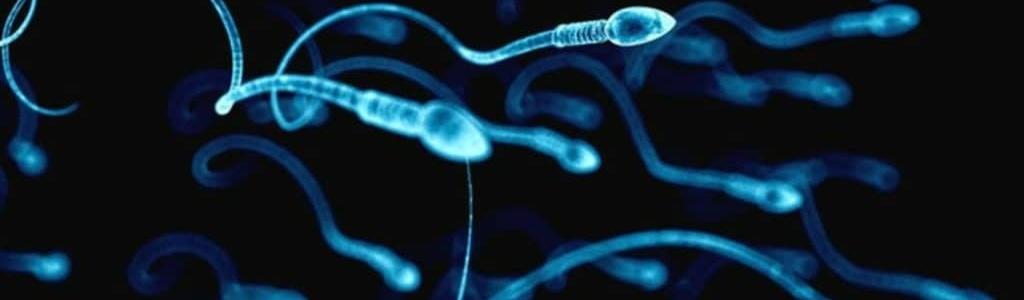 Олигозооспермия – важнейший маркер мужского НЕздоровья