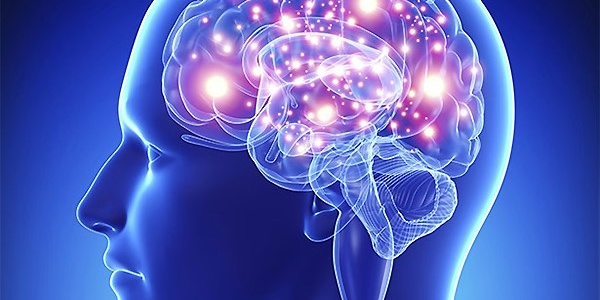 Витамин Д на страже когнитивной функции