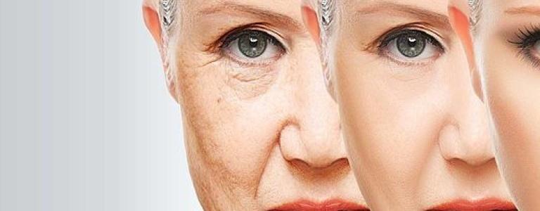 Сенолитики – терапия будущего в лечении возраст-ассоциированных заболеваний