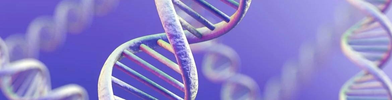 Генетические изменения при бесплодии у мужчин и у женщин могут иметь схожую природу