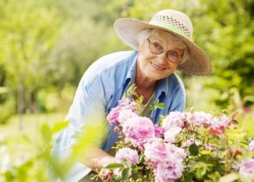 Эстрон – важнейший эстроген после менопаузы