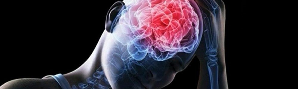 Прогестерон защищает мозг при травмах