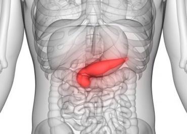 Трансплантация поджелудочной железы может быть эффективна и при диабете 2 типа