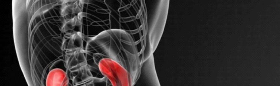 Запас железа в организме влияет на смертность при болезни почек